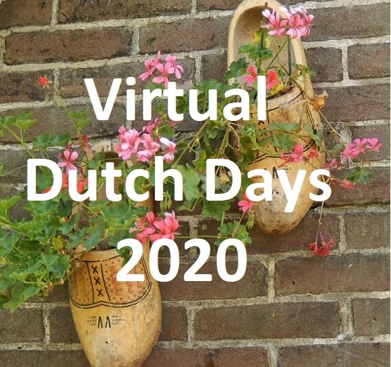 Virtual Dutch Days 2020 decorative image